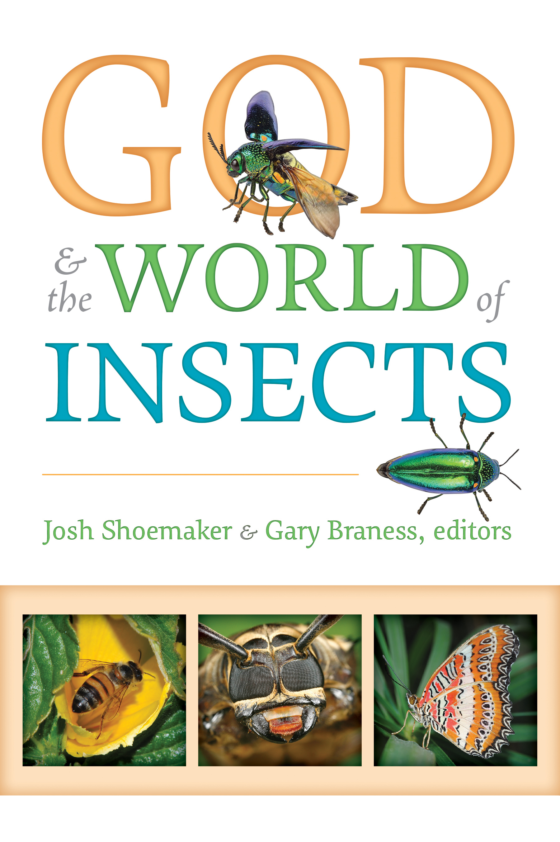 God_World_Insects_Cover.indd