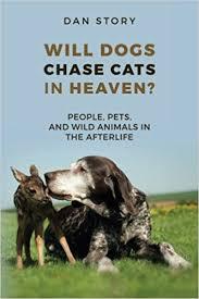 dogs cats in heaven.jpg